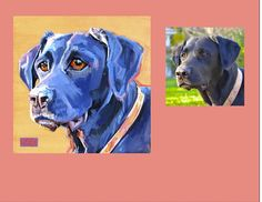 """Bailey"" a Black Lab  Color Dog Portraits by Sarah Gayle Carter"