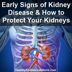 Early Signs of Kidney Disease & How to Protect Your Kidneys