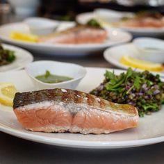 Frischer Keta Lachs aus dem Yukon River in Alaska! Eines der tollen Gerichte die @bartsfishtales heute für uns gekocht hat. #bartfishtales