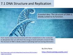 Bioknowledgy presentation on 7.1 DNA structure and replication AHL