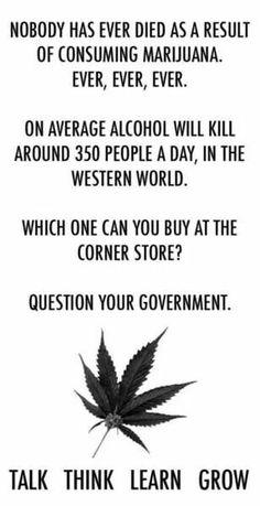 cannabis info facts truths