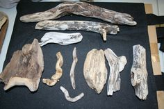 10 Pieces Gnarly Shaped Natural Driftwood Pieces by caroledoc, $12.00