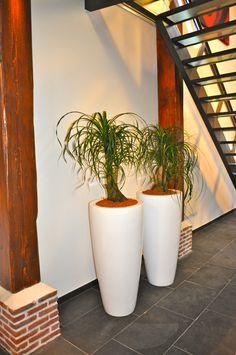 witte potten met planten onder trappenhuis..blikvangers