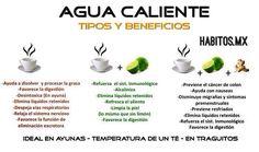 Agua caliente y sus beneficios - Vía Habitos.mx