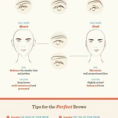 How to Shape Your Eyebrows | Visual.ly