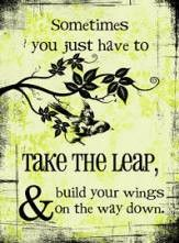Sometimes you just have to take the leap and build your wings on the way down