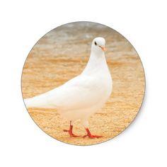 Cute White Pigeon Classic Round Sticker - craft supplies diy custom design supply special