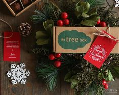 Eco-friendly Christmas favors - seed balls to grow plants easily at home! Christmas Favors, Christmas Love, Christmas Wreaths, Christmas Ornaments, Tree Box, Paper Tags, Growing Plants, Balls, Eco Friendly