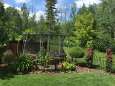 We all have that one eyesore in our yard that drives us crazy! For some, its an air conditioning unit, for others the garbage cans. For us; the ugly trampoline in the corner.