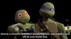 I think Mikey is just like me xDDD Ninja Turtles Art, Teenage Mutant Ninja Turtles, Turtle Facts, Tmnt 2012, Cartoon Shows, Dogs And Puppies, Fan Art, Anime, Fandoms