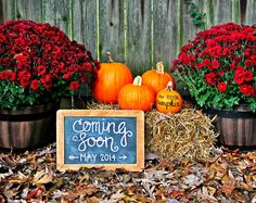 Cute way to announce a baby in the fall