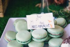 Moss macarons from a