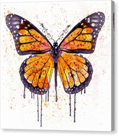 Butterfly Wall Art - Painting - Monarch Butterfly Watercolor by Marian Voicu Monarch Butterfly Tattoo, Butterfly Wall Art, Butterfly Painting, Butterfly Watercolor, Butterfly Design, Watercolor Illustration, Watercolor Paintings, Watercolor Eyes, Watercolours