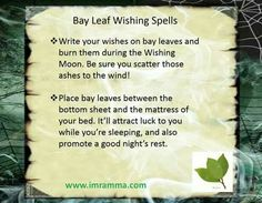 Bay Leaf Wishing Spell