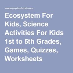 Ecosystem For Kids, Science Activities For Kids 1st to 5th Grades, Games, Quizzes, Worksheets