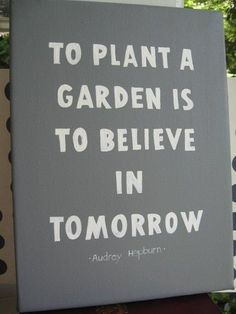 ...says the first-time-gardener! Here's to having a green thumb!
