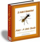 160 pg Ants, a Comprehensive Unit Study & Teaching Guide/Activity Book - St Aiden's Homeschool 13 Year Olds, Book Activities, Ants, Summer Fun, Insects, Homeschool, This Book, Study