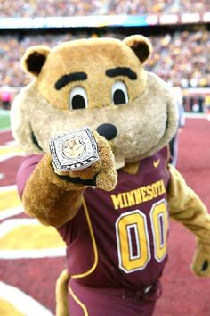 University of Minnesota, Twin Cities Golden gophers - costume mascot Goldy the Gopher.