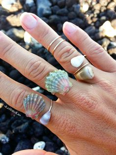 Sunrise Shell Wrap Ring, sunrise shell jewelry, moonrise shell, Sterling Silver…