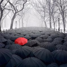 surreal-photography-robert-jahns-63 Stop trying to fit in, when you were born to stand out! You're one in a million!