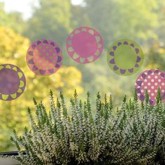 Sun and flower - removable window decals, design by lepeeto Spring Is Coming, Window Decals, Windows, Sun, Flowers, Design, Florals, Window, Flower
