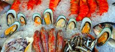 Fish and shellfish in your diet - Live Well - NHS Choices