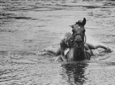 Sydney Hoyle Floundering on Back of Horse in Water at Full Cry Farm Photographic Print by Art Rickerby at AllPosters.com
