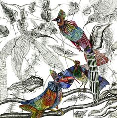 Pen & Ink Drawings - Kate Morgan - Artist & Illustrator