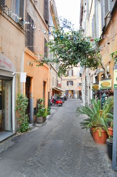 Roman Alley Ways Photography | Luci's Morsels  #travel #italy