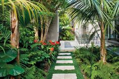 Tropical outdoor landscaping add plenty of color and even water features. To maximize the beauty of tropical outdoor landscaping, it is best to add a mixture of plants. Tropical Garden Design, Tropical Backyard, Tropical Landscaping, Outdoor Landscaping, Landscaping Plants, Tropical Plants, Outdoor Gardens, Tropical Gardens, Luxury Landscaping