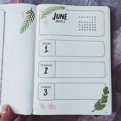 "shawndina on Twitter: ""it's not even June but I already started the month in my bullet journal!! going for that tropical vibe … """