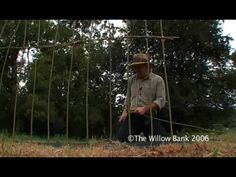 Making Living Willow Sculptures - Weaving the Weavers - YouTube