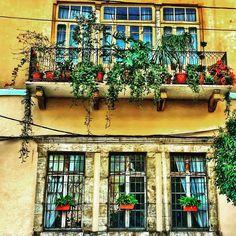 On instagram by halambk #arcade #microhobbit (o) http://ift.tt/1n81NU0 Hugo Pratt? Tu veux bien te poser à Beyrouth pour quelques temps? Je te ferai découvrir les dessous d'une ville de milles et milles couleurs! #architecture #architectureporn #architecturelovers #archidaily #archilovers #archimasters #architexture #yellow #hdr #color #colorful #winter #balcony #facade #zoomin #lookup  #house #contrast #perspective #geometry #composition #bestoftheday #beirut #beirutdetails #love…