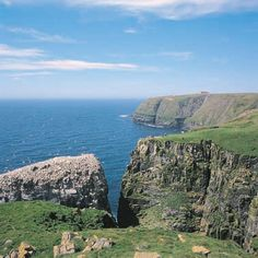 Newfoundland Cape St Mary's. I was there Sept 2012. Beautiful place and hiking.