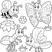 Image result for insect colouring pages worm Blackline Images