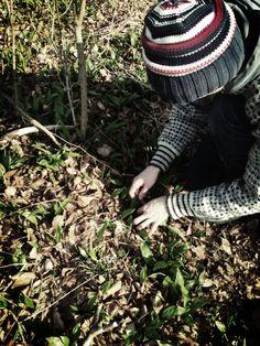 Ramlöken tar över skog och mark så här års och vi frossar och samlar...