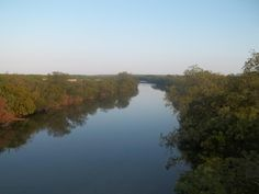 Concho River - The Concho River is a river in Texas with three primary feeds: the North, Middle, and South Concho Rivers. The North Concho River is the longest fork, starting in Howard County and traveling southeast for 88 miles until merging with the South and Middle forks near Goodfellow Air Force Base at San Angelo, Texas. The combined branches of the river flow east about 58 miles until it eventually empties into the Colorado River about 12 miles east of Paint Rock, Texas.