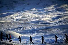 """Durch das ewige Eis beim """"Polar Circle Marathon"""" auf Grönland Foto: Albatros Travel http://www.reisegezwitscher.de/reisetipps-footer/1925-marathon"""