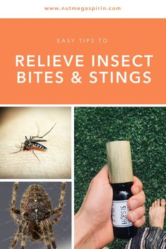 Lot of 30 Sting Relief Insect Bite Antiseptic /& Pain Reliever Camping Emergency