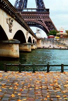 audreylovesparis:  Paris in the autumn