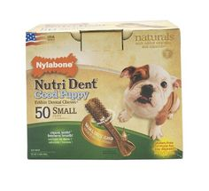 Nylabone Nutri Dent Puppy Bacon Cheese 50Count Pantry Pack * Continue to the product at the image link.