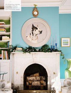turquoise walls #dog #great #dane #animal