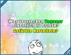Ob das auch Spaß macht? #Ostern #Ostern2017 #Osterzeit #nurSpaß #lachen #Humor #lustige #Sprüche Vegan Quotes, Quotes About Everything, Funny Times, Fit Board Workouts, Humor, Burn Calories, Text Messages, Daily Quotes, Picture Quotes