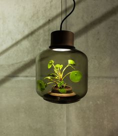 Have you ever wanted a plant in your home or office but lack a window and sunlight? Then checkout Mygdal Plantlamp. This unique, self-sustaining lamp allows you to care for a plant in your living space without having to have direct sunlight and water every day. The lamp was created by Emilia Lucht a…
