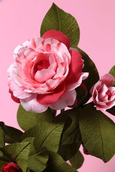 Crepe paper camellia, handcrafted and photographed by Papetal