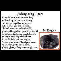 24 Best Pugs images   Pet loss, Pet grief, Dog memorial