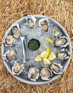 Hog Island Sweetwater Oysters