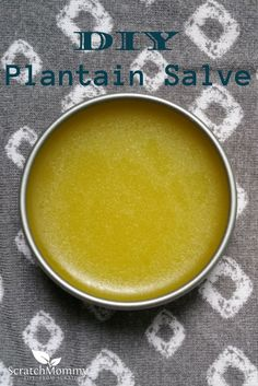 DIY Plantain Salve Recipe {Soothes and Heals} - Herbs are great for healing and soothing, and this DIY plantain salve is no exception. Add this to your DIY list today and have healing salve at your fingers! Natural Home Remedies, Herbal Remedies, Health Remedies, Natural Medicine, Herbal Medicine, Diy Masque, Salve Recipes, Savon Soap, Healing Herbs