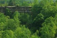Natural Bridge in the Red River Gorge