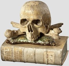 "Halloween book prop inspiration~ A German memento mori - book and skull, century ""Theologica Universa"", Augsburg 1760 Memento Mori, Crane, Vanitas Vanitatum, Aliens, Danse Macabre, Historical Artifacts, Halloween Books, Skull And Bones, Skull Art"